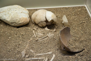 Nafplio Archaeological Museum infant's burial