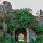 Castle gate overgrown with vegetation