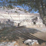 Theater of Philippi ruins and a large tree