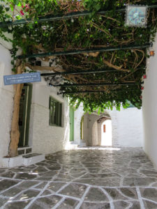 Street covered with bougainvillea vine